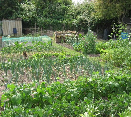 Hereford Garden Allotments