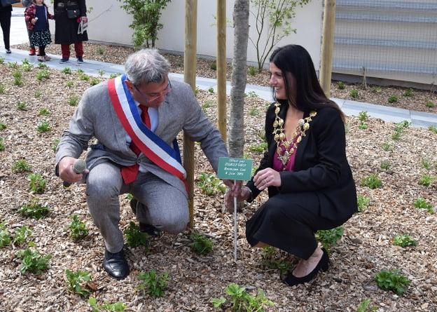 Community Led Plans to plant trees