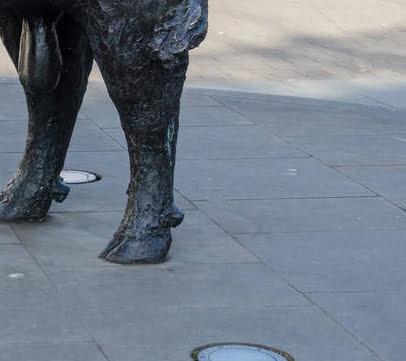 Bronze Bull Statue In Hereford City Center