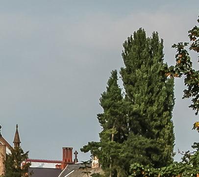 The Hereford Skyline